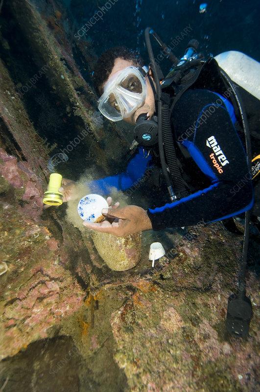 Diver exploring a shipwreck