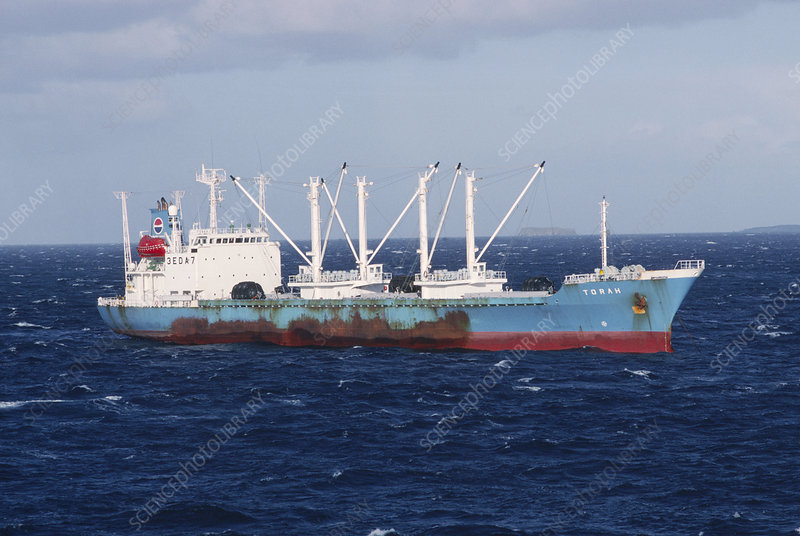 Fishing factory ship