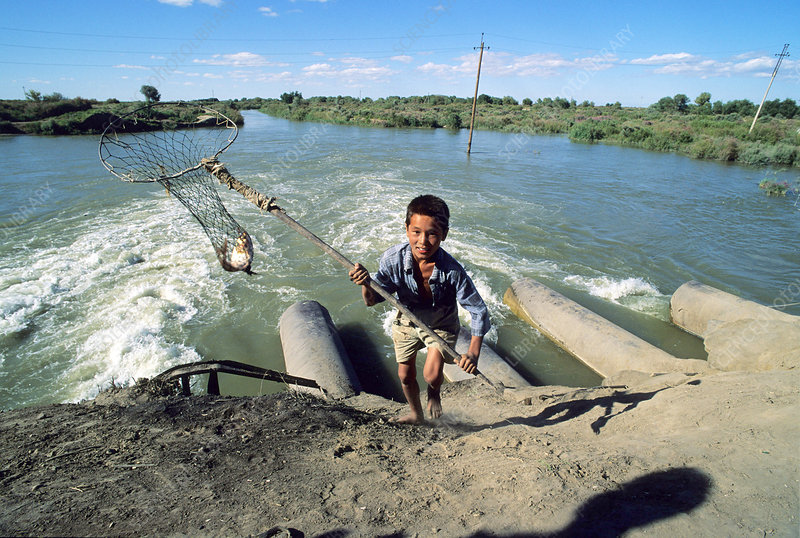 Aral Sea fishing, inflow pipes