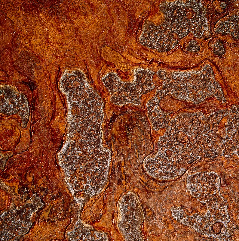 Rust seen on a steel sheet