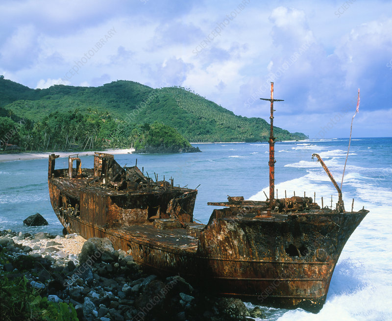 Rusting shipwreck on a sea coast