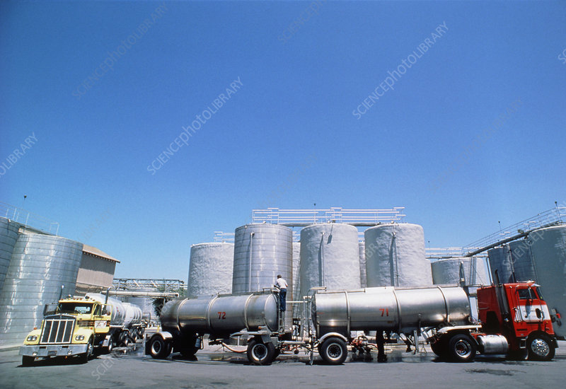 Fermentation vats in Californian wine production