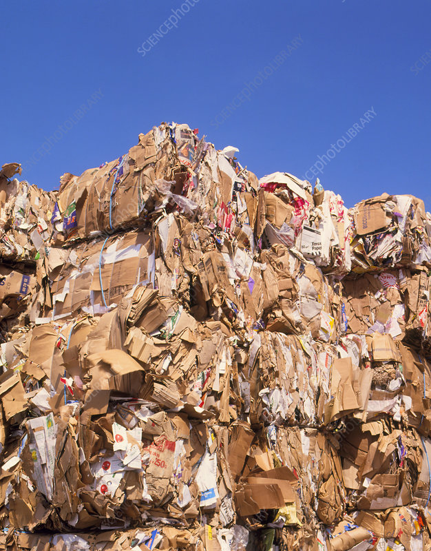 Bales of carboard and paper for recycling