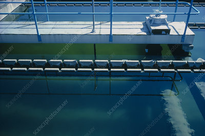 Sedimentation tank at a water treatment works