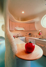 Kitchen area of the World's Safest House