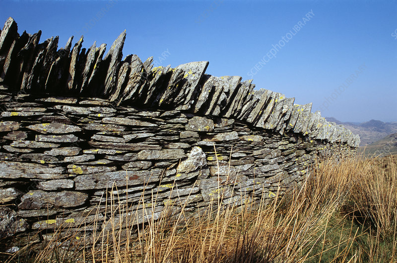 Dry stone wall, north Wales, UK