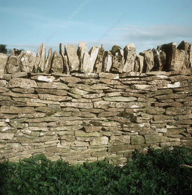 Stone wall stock image t835 0593 science photo library for Boundary wall cost calculator