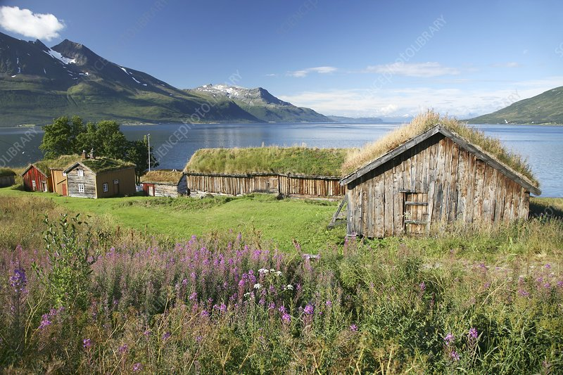 Turf roofed wooden huts, Norway