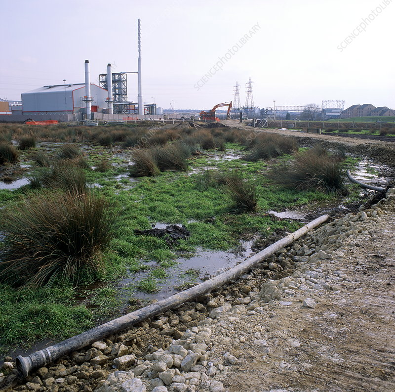 Marsh threatened by construction