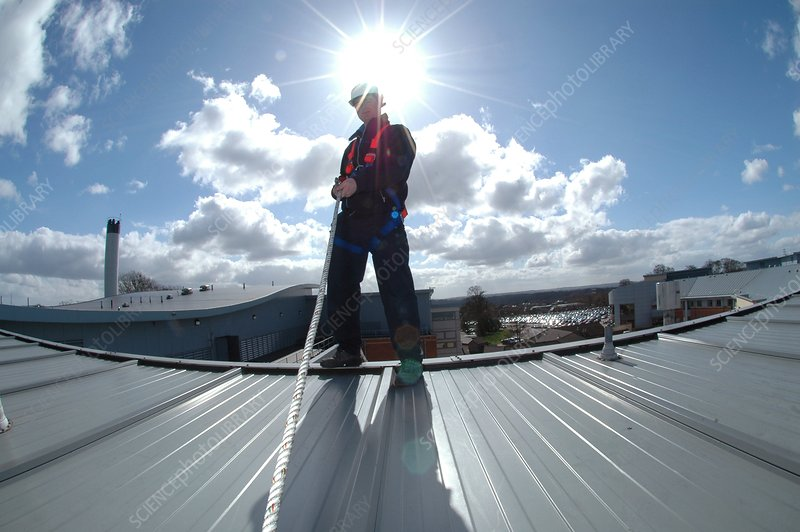 Rooftop safety harness