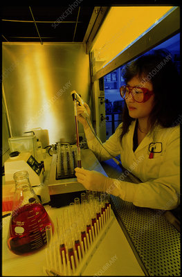 Female chemist filling a test tube with a pipette