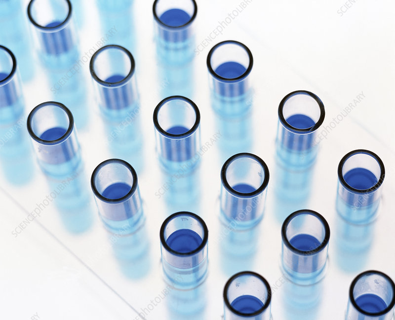 Test tubes containing blue liquid in a rack