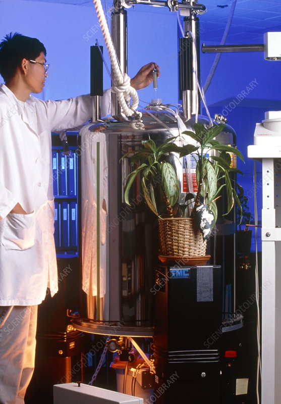 Pharmaceutical technician puts plant sample in NMR