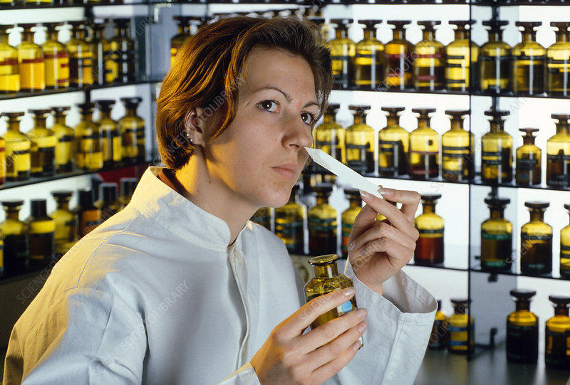 Perfume research, cosmetics industry