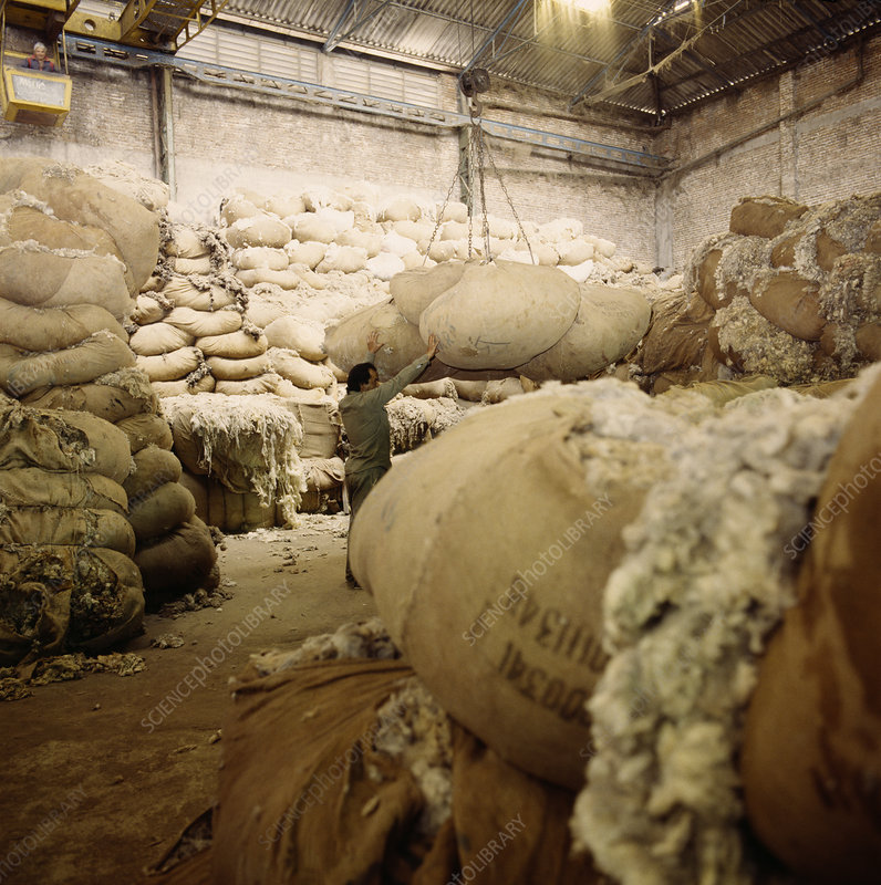 Fleece storage at a tannery