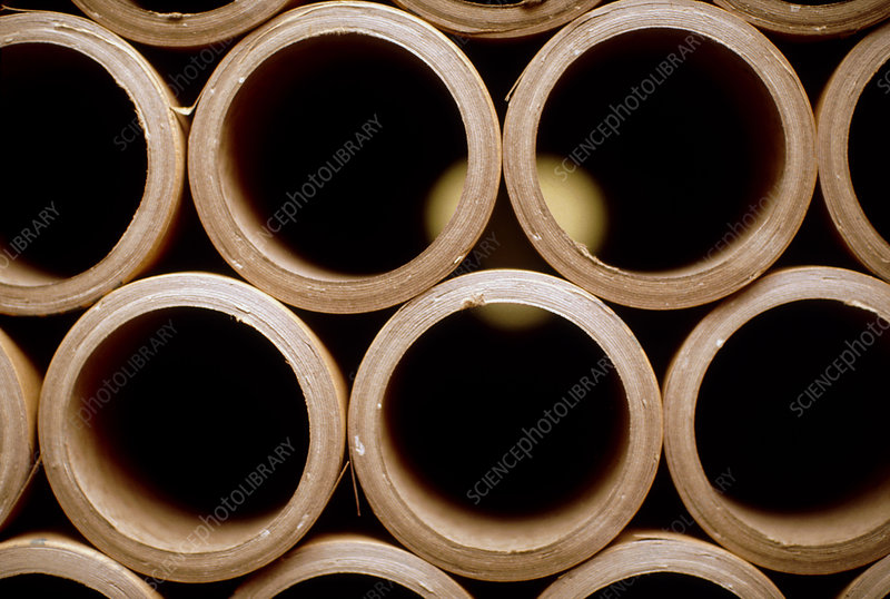 View of a stack of cardboard tubes