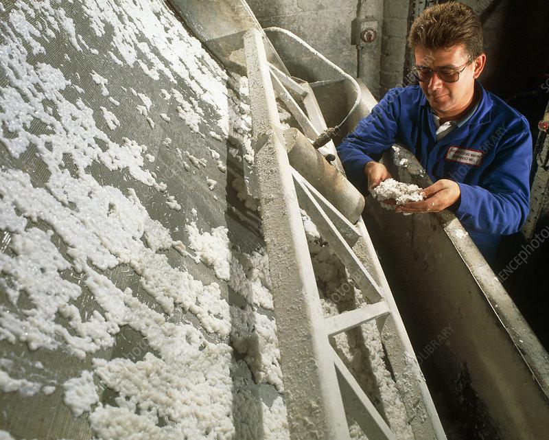 Pulp sampling in paper mill
