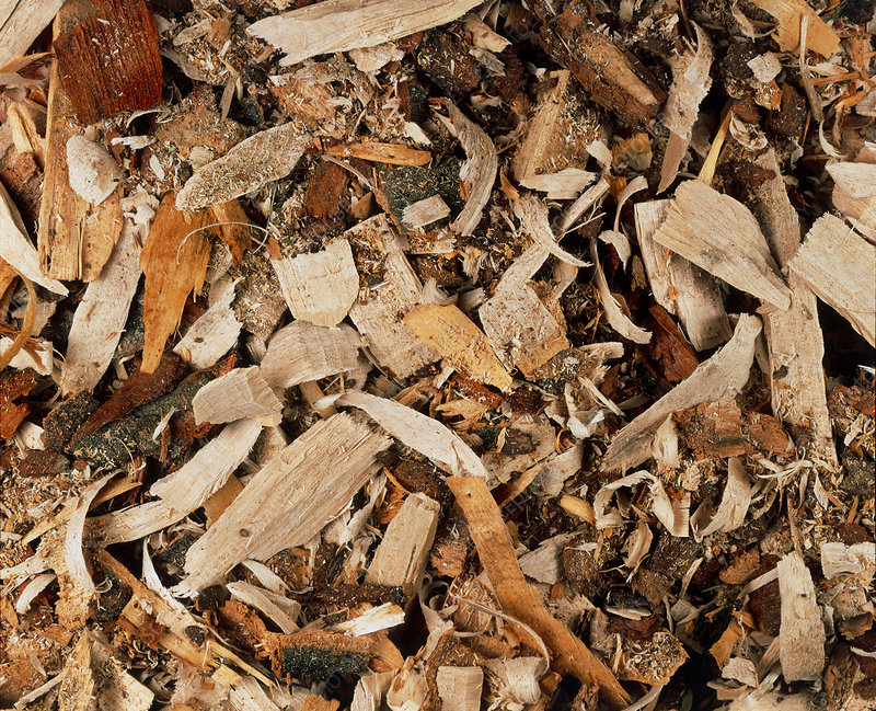 View of wood chips
