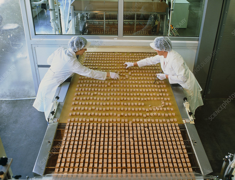 Women working on a chocolate bar production line.
