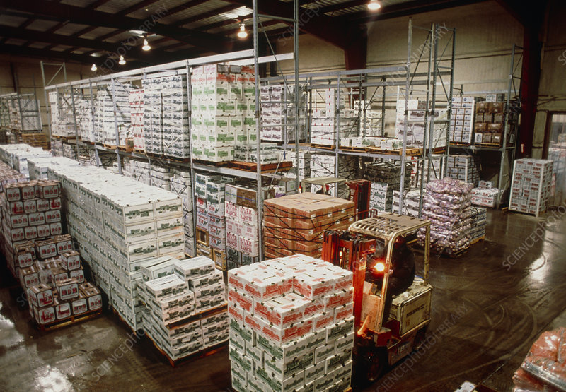 Boxes of produce in a refrigerated warehouse - Stock Image