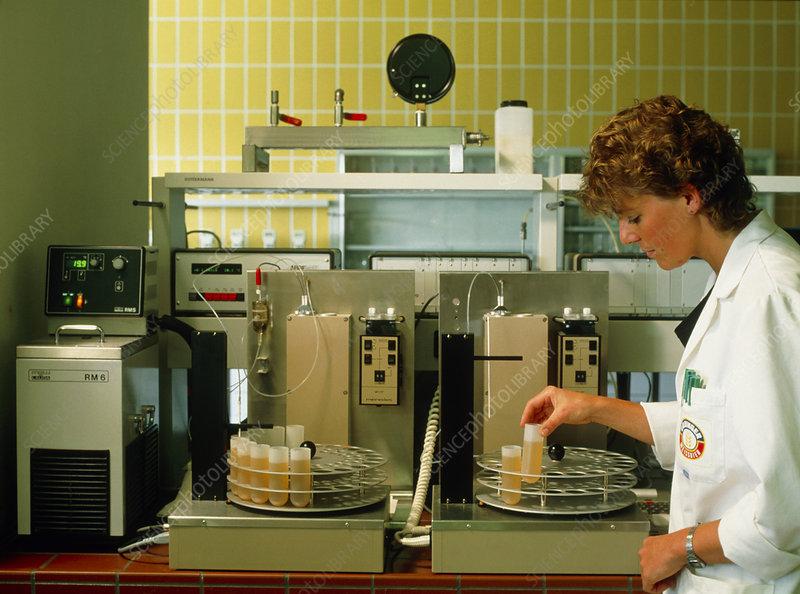 Technician prepares beer samples for testing
