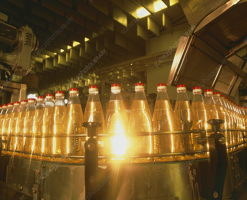 Bottles of cooking oil on a production line