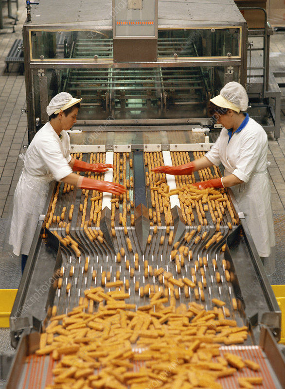 Fish finger production line