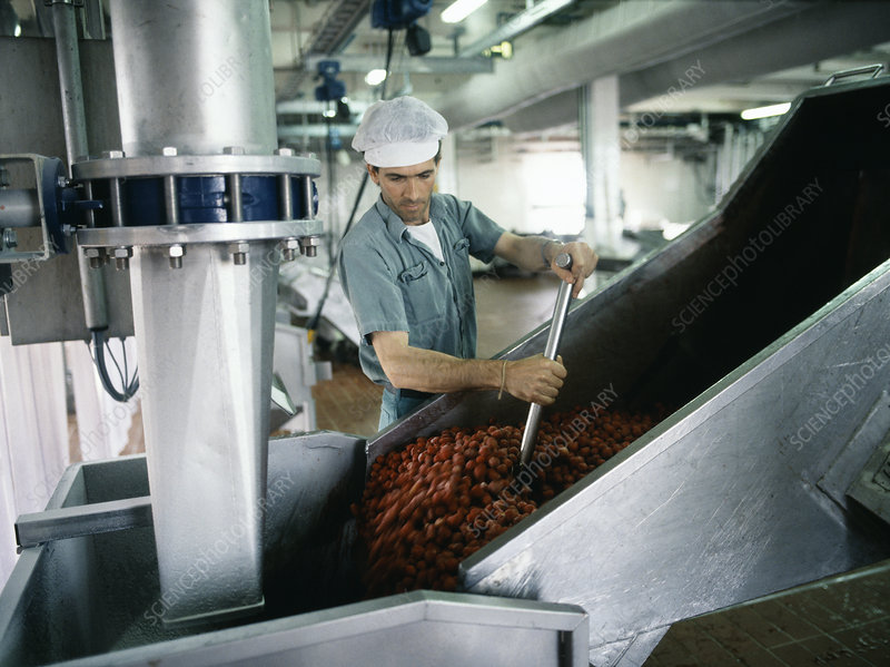 Fruit preserve manufacture