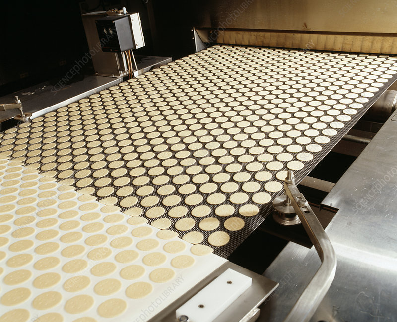 Biscuit manufacture