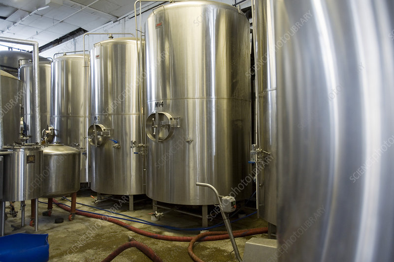 Vats in microbrewery