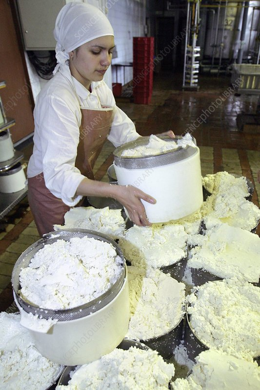 Cheese production, mould filling