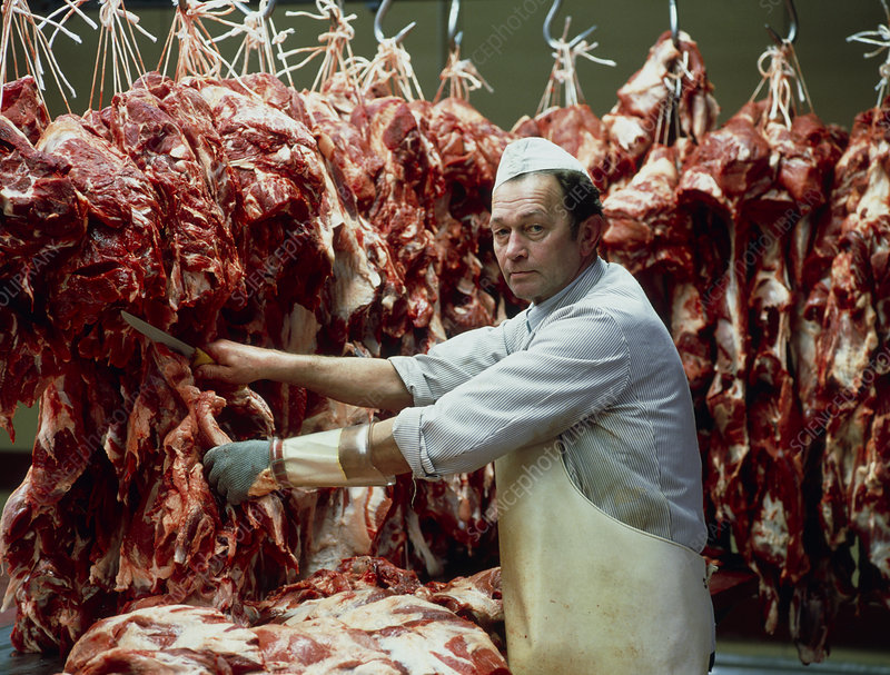 Pig carcasses being butchered in an abattoir