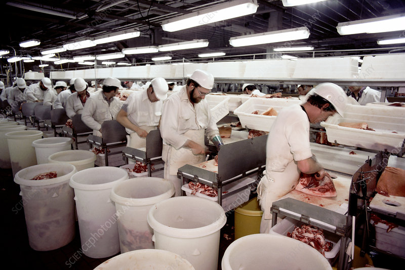 Turkey slaughterhouse