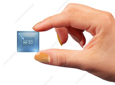 Intelligent label chip