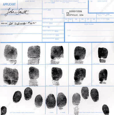 Fingerprint identification application
