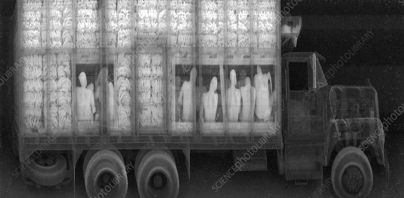 An x-ray of a truck with illegal immigrants