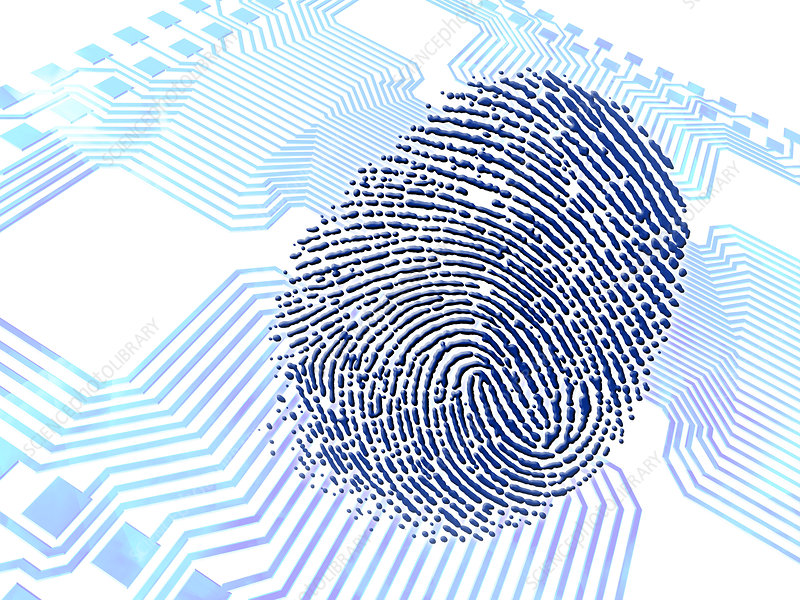 Biometric fingerprint scan, artwork