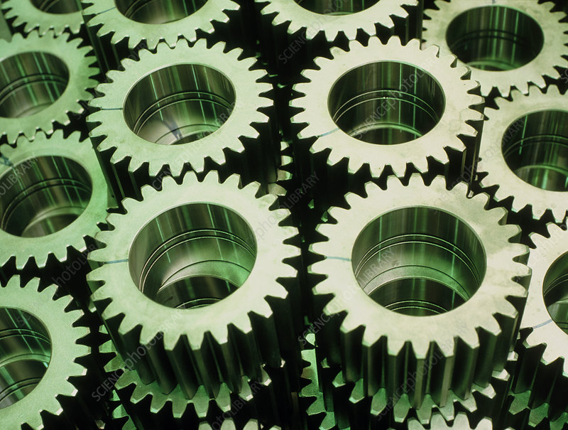 Cogs for use in rolling mill gears