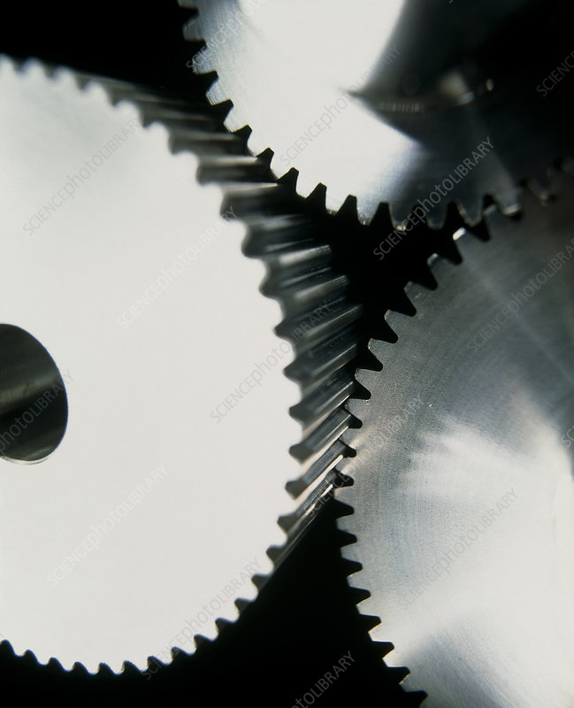 View of cogs from a gear system