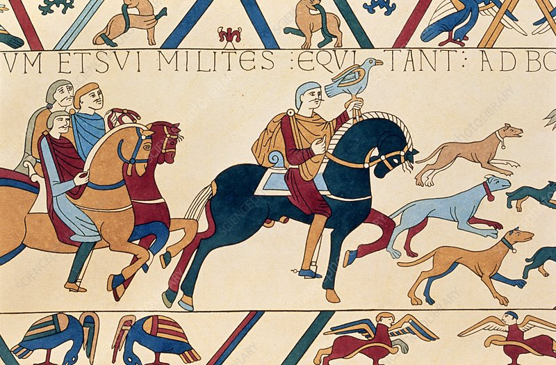 Bayeux Tapestry: William the Conqueror hawking