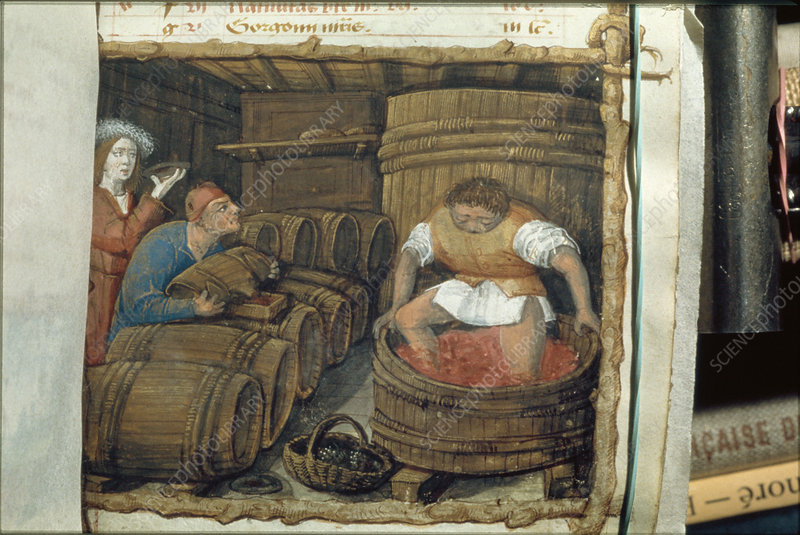 Traditional winemaking