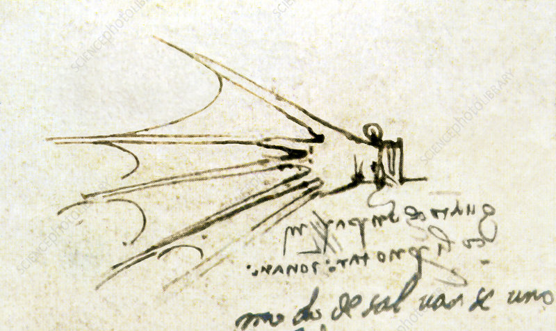 Da Vinci's webbed glove for swimming