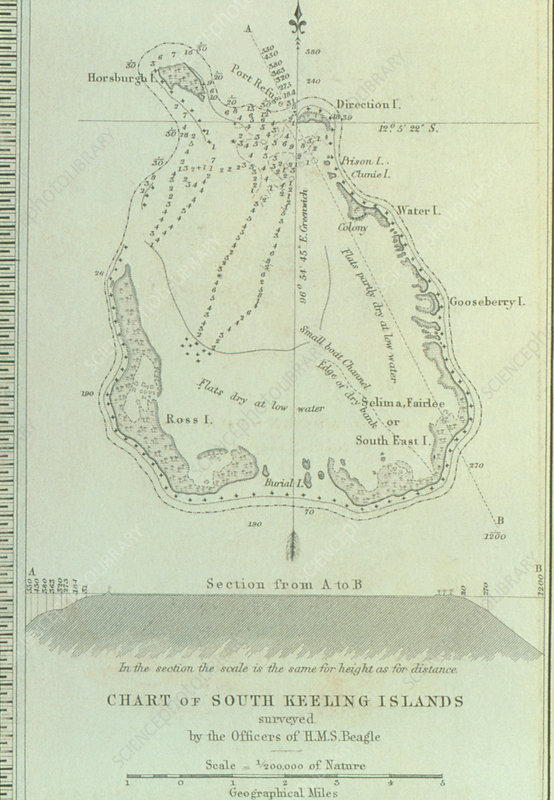 Survey of an atoll drawn by the crew of HMS Beagle