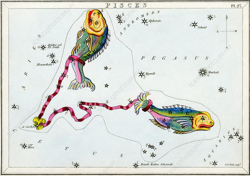 external image V7000198-Pisces_constellation-SPL.jpg