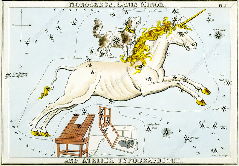 Monoceros and Canis Minor constellations