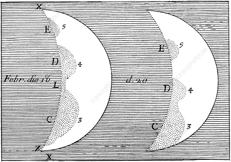 Bianchini's drawings of Venus, 1726