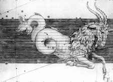 Capricorn constellation, 1603