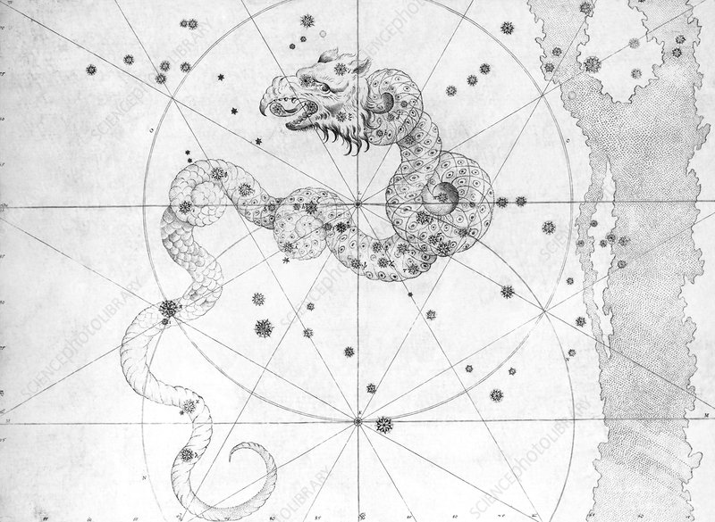 Draco constellation, 1603