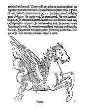 Equus constellation, 1482