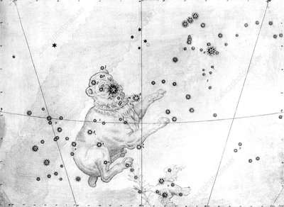 Canis Major constellation, 1603